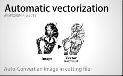 automatic vectorization